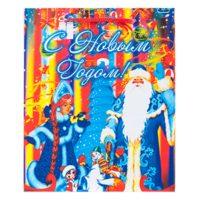 "Пакет подарочный ""Дед Мороз и Снегурочка"", 18х8х21 см, бумага"