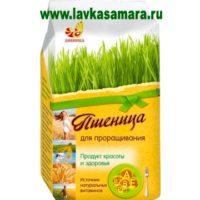 Пшеница, зерно для проращивания, 500 гр. (Дивинка)